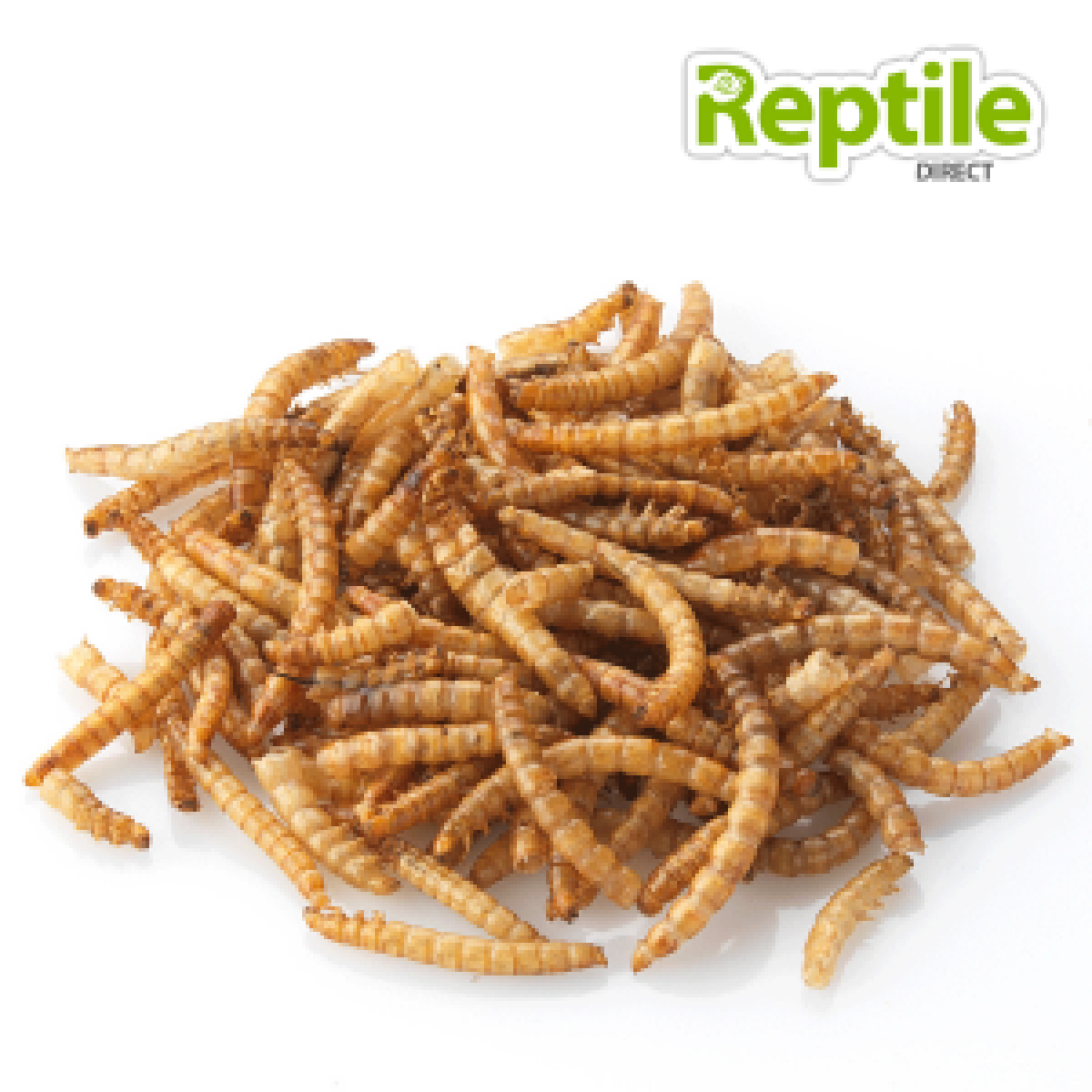 10-15mm Meal Worms Tub
