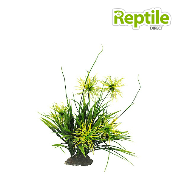 Lucky Reptile Yellow Thistle approx 40cm