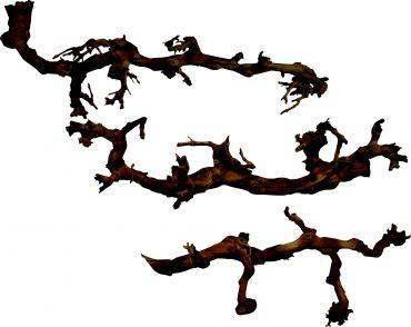 Lucky Reptile Dark Grapevines X-Large