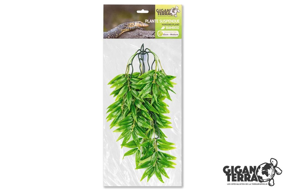 Suspended plant 4 - Medium