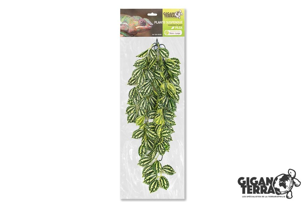 Suspended plant 1 - Large