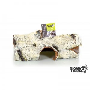 Birch Stump XL - 31X13X13 CM