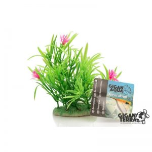 Plant on foot 12 cm - 521