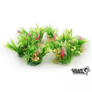 Plant on foot 12 cm - 523