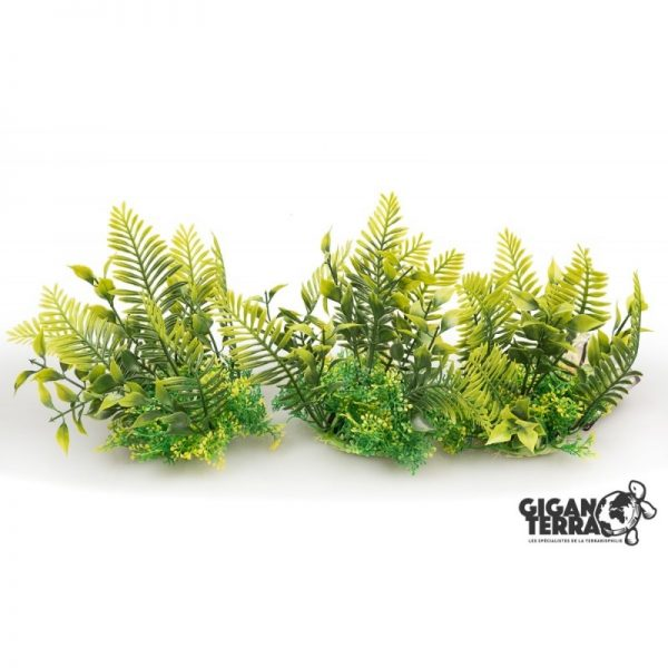 Plant on foot 12 cm - 529