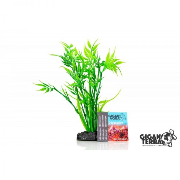 Plant on foot 652 - H 20 CM