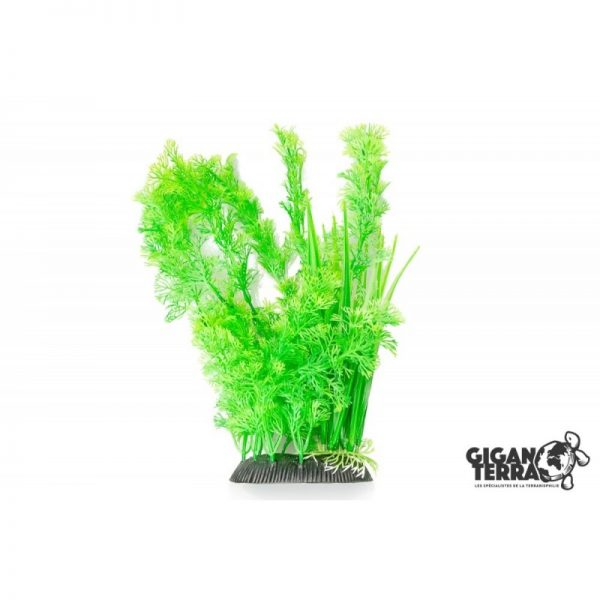 Plant on foot 656 -  H 30 CM