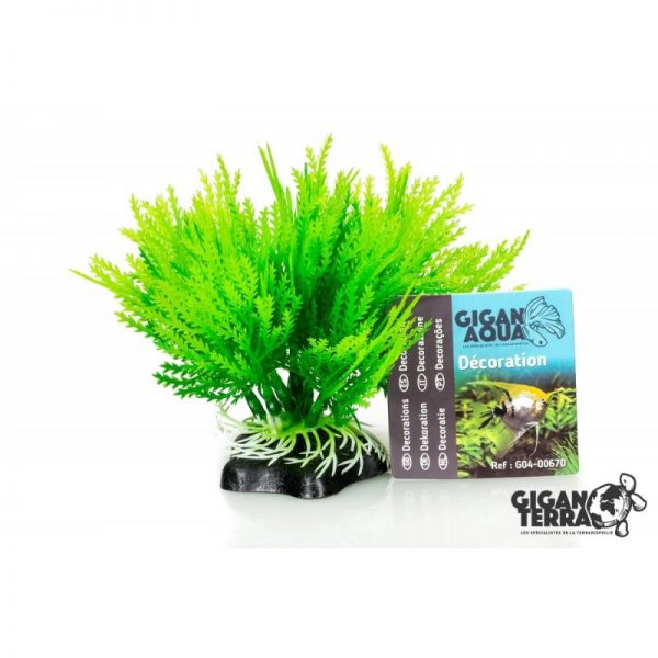 Plant on foot 670 -  H10 CM